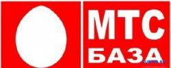 МТС, Витебская область, подключение, абонентская база