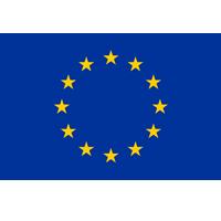 ЕС,  порнография,  государство