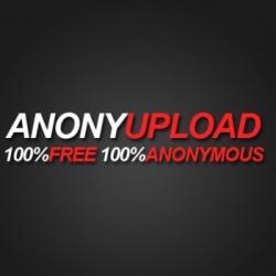 Anonymous,  Megaupload,  хостинг
