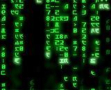 Каждый пятый житель Евросоюза был жертвой интернет-мошенников