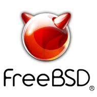 FreeBSD,  взлом,  SSH,  операционная система