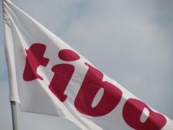 TIBO, TIBO2012, Выставка, График работы