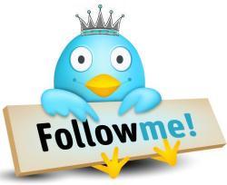 Твиты, перевод, Twitter
