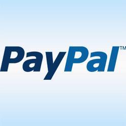 PayPal, платежная система, США, терминалы
