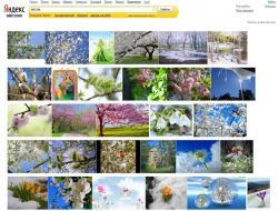 Рунет, тестирование, интерфейс, Яндекс.Картинки