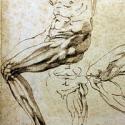 рисунки,  Микеланджело,  iPad, Ватикан, библиотека